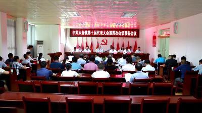 木鱼镇第十届党代会第四次会议暨第十届人代会第四次会议胜利召开