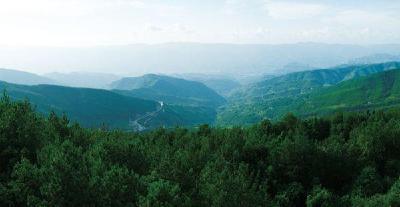 中办国办印发《天然林保护修复制度方案》
