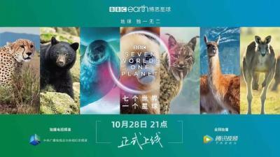 英国广播公司最新制作纪录片,讲述神农架金丝猴的故事
