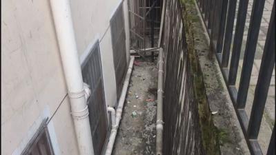 """【创建文明城市 建设和谐林区】—— 街道背巷仍有垃圾乱丢 别让""""创城""""留下死角"""