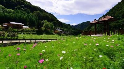 神农架林区温水村被列入全省乡村旅游重点村名录