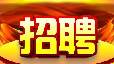 今起至4月底,武汉每天举办近20场网上专场招聘活动
