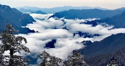 有一种人间美景,叫神农架四月飘雪!