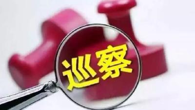 林区党委第六巡察组到阳日镇反馈巡察意见