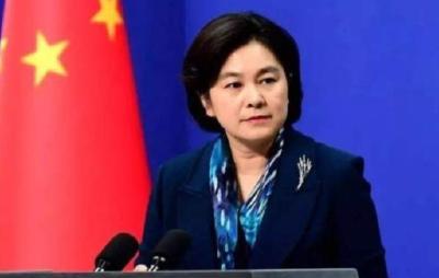 华春莹:英国给过香港什么自由?