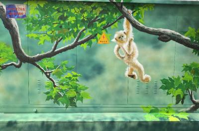 神农架电力设施变身珍稀动植物宣传窗口