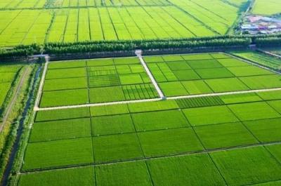 国家土地督察武汉局来随调研基本农田划定