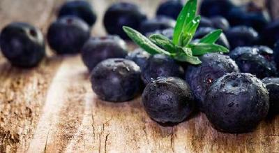 网购蓝莓苗被骗工商协助追回货款