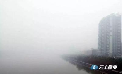 随州重度雾霾加冷空气来袭 市民注意减少外出