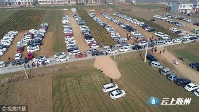 西安村民将麦田设为临时停车场收费遭质疑 官方:不影响收成