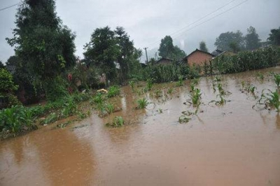各地各部门采取有力措施应对暴雨洪涝灾害