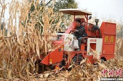 三部门发文将三大粮食作物制种纳入中央财政农业保险保费补贴目录