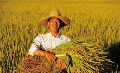 """好消息:首届""""中国农民丰收节""""湖北主会场活动将在随县举办"""