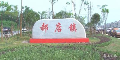 广水这个镇村获评湖北省森林城镇和绿色乡村