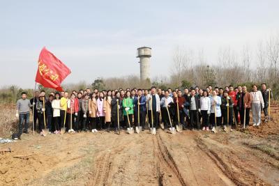 """市建投公司植树活动为""""春天增一抹绿意"""""""