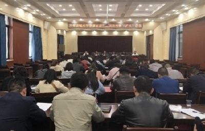 共青团曾都区委二届四次全体(扩大)会议召开