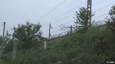 环境整治|广水市组织专班督查汉丹线环境安全整改落实情况