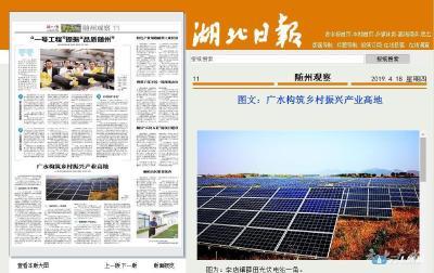 湖北日报点赞|广水构筑乡村振兴产业高地