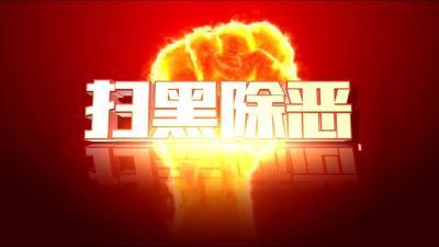 随州市检察机关依法对杨炎炎等11人批准逮捕