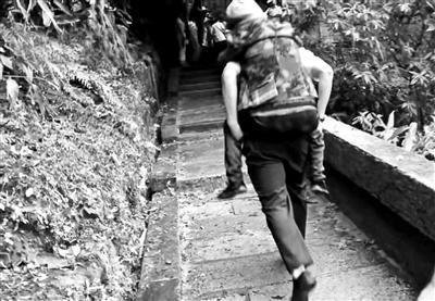 暖心!八旬老人想看乐山大佛 消防员背她爬栈道