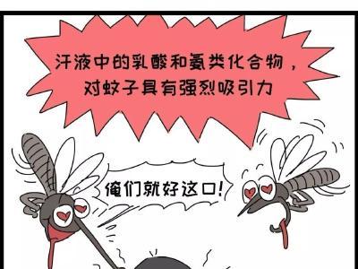 蚊子叮你并非因为血型 勤洗澡少运动可减少对蚊子吸引