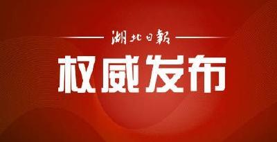 """湖北职称制度改革再放""""新招"""" 基层全科医生符合条件直接评副高"""
