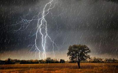 应急管理部发布安全提示:雷雨天气避免去山区、河谷游玩