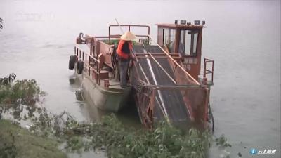 白云湖库区清洁工作持续开展