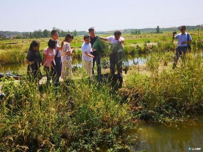 市农业农村局组织青年干部深入乡镇 学习当地特色种养殖产业