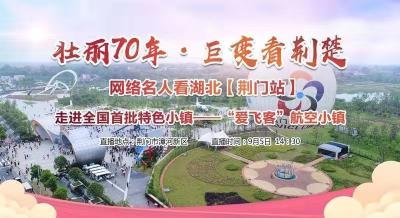"""""""壮丽70年·巨变看荆楚""""网络名人看湖北走进荆门""""爱飞客""""航空小镇"""