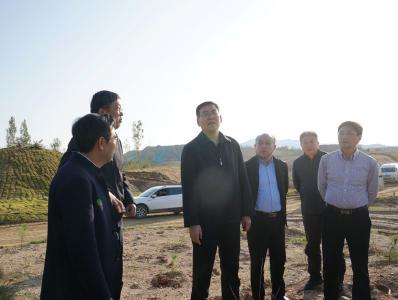 陈瑞峰开展主题教育解决民生问题及生态绿城建设督导调研时强调 大力推进生态绿城建设 奋力打造鄂西绿色发展示范区高地