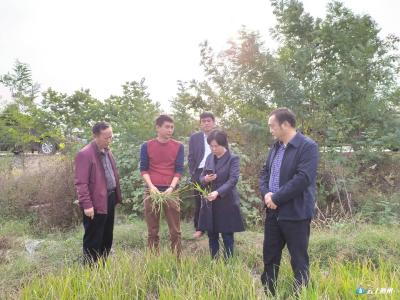 农业农村部抗旱救灾工作组来随州调研指导