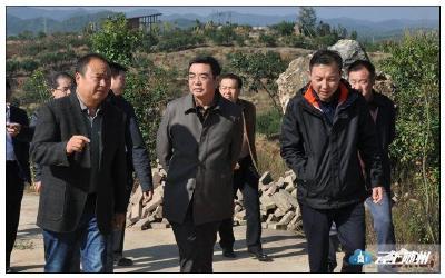 杨天兵带队赴大洪山开展优化营商环境专题调研
