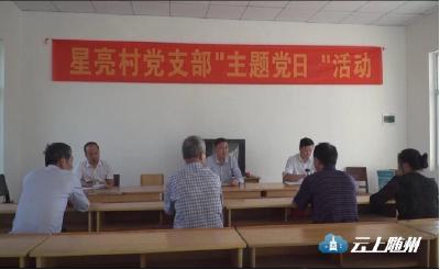 随县在主题教育中全力整治软弱涣散党组织