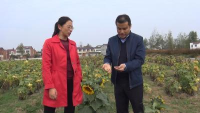 随县县委宣传部调研指导服务队建设