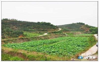 大洪山景区探索旅游产业扶贫