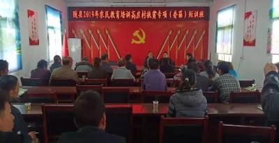 淮河高庄:开展香菇种植培训 巩固产业扶贫成效