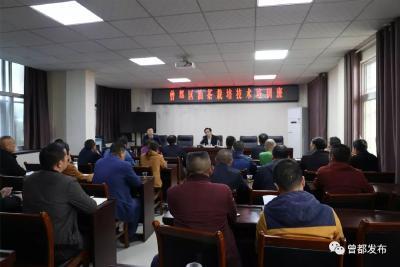 曾都区林业局开展油茶丰产栽培技术培训