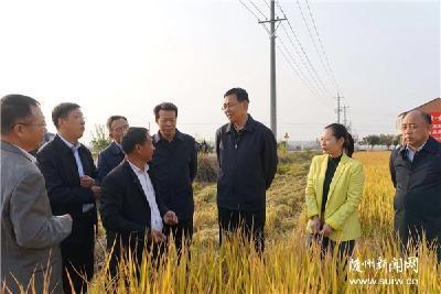 陈瑞峰在随县开展主题教育产业扶贫调研时强调 做强做优扶贫产业 以特色产业发展巩固提升脱贫攻坚成果