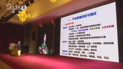 V视│2019湖北.随州香菇产业高峰论坛举办