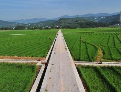 随县2019年高标准农田建设项目即将开工
