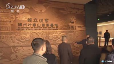 《政协提案追踪》 委员发声:将叶家山 文峰塔墓地出土文物留在随州