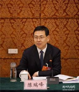 陈瑞峰参加人大代表团审议和政协委员分组讨论强调 升腾干事创业强大气场 继续保持良好发展态势