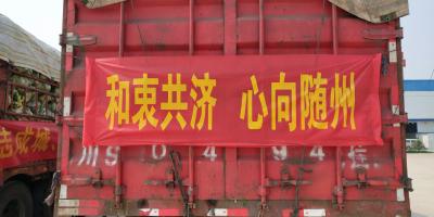 四川成都120吨新鲜蔬菜助力湖北随州抗疫一线