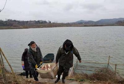 暖心!广水疫情告急,这个温州人送菜拖鱼还捐款