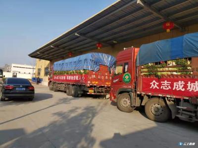 四川省妇女联合基金会捐赠蔬菜助力随州市疫情防控工作