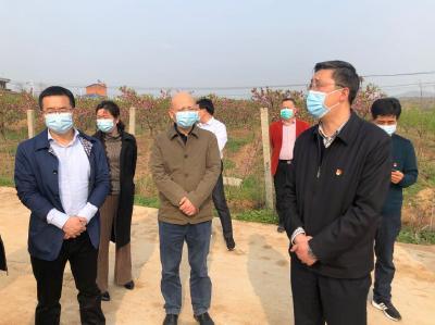 陈兴旺到尚市镇调研指导高标准农田建设和扶贫工作