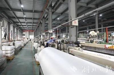 湖北日报丨曾都区规模以上工业企业全部复工