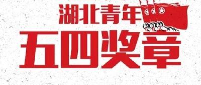 """40人21集体获""""湖北青年五四奖章"""""""