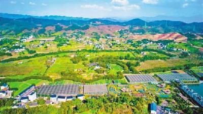 随州市农业农村局与市气象局合作联动推进乡村振兴